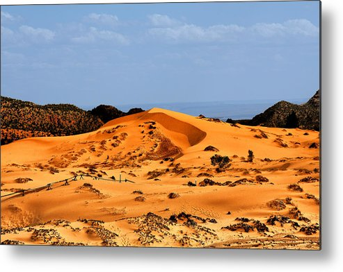 Coral Pink Sand Dunes Metal Print featuring the photograph Coral Pink Sand Dunes Utah by Christine Till