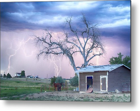 Country Metal Print featuring the photograph Country Horses Riders On The Storm by James BO Insogna