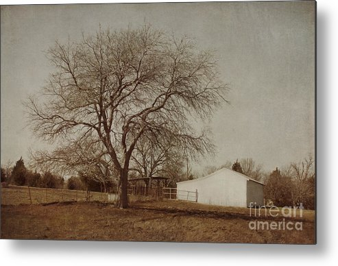 Countryside Metal Print featuring the photograph Countryside by Elena Nosyreva