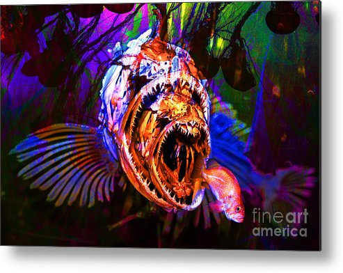 Jelly Metal Print featuring the photograph Creatures Of The Deep - Fear No Fish 5d24799 by Wingsdomain Art and Photography