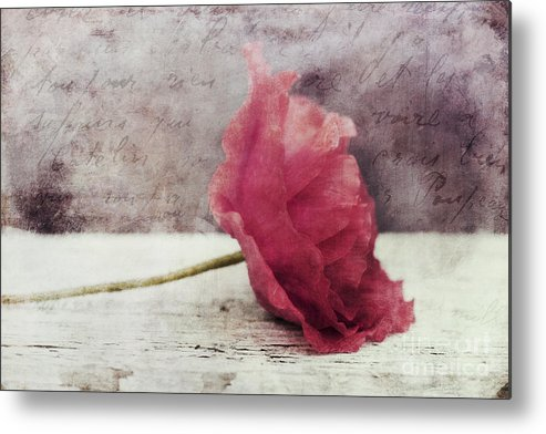 Poppy Metal Print featuring the photograph Decor Poppy Horizontal by Priska Wettstein