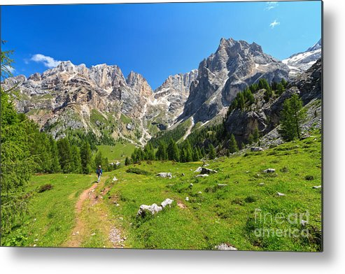 Landscape Metal Print featuring the photograph Dolomiti - Contrin Valley by Antonio Scarpi