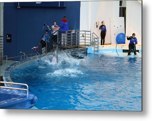 Inner Metal Print featuring the photograph Dolphin Show - National Aquarium In Baltimore Md - 121292 by DC Photographer