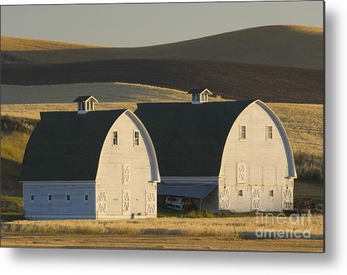 Agricultural Metal Print featuring the photograph Double Barns by John Shaw