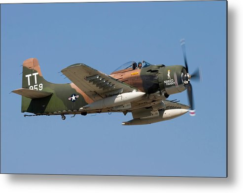 3scape Metal Print featuring the photograph Douglas Ad-4 Skyraider by Adam Romanowicz