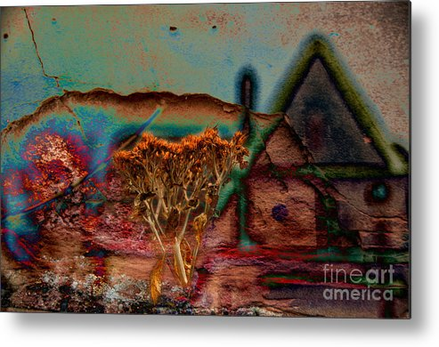 Composite Metal Print featuring the photograph Dried And Growing From A Painted Rock by Jay Ressler