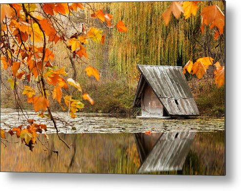 Dawn Metal Print featuring the photograph Duck's House by Evgeni Dinev