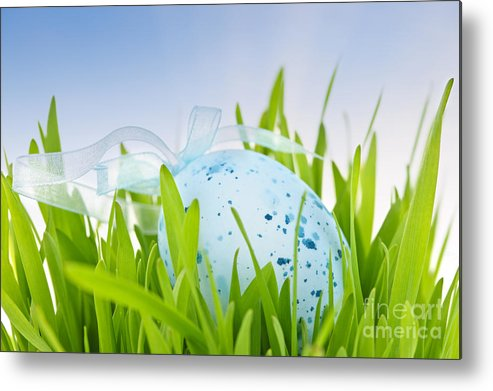 Easter Metal Print featuring the photograph Easter Egg In Grass by Elena Elisseeva