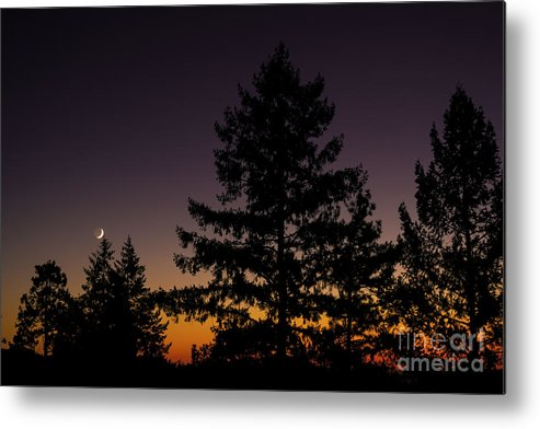Solar Eclipse Metal Print featuring the photograph Eclipse In Yosemite by David Millenheft
