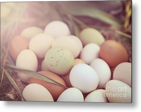 Easter Metal Print featuring the photograph Eggs by Sophie McAulay