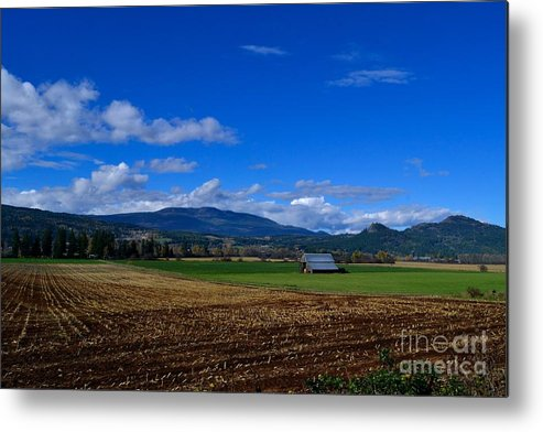 Phil Dionne Photography Metal Print featuring the photograph Enderby Landscape by Phil Dionne