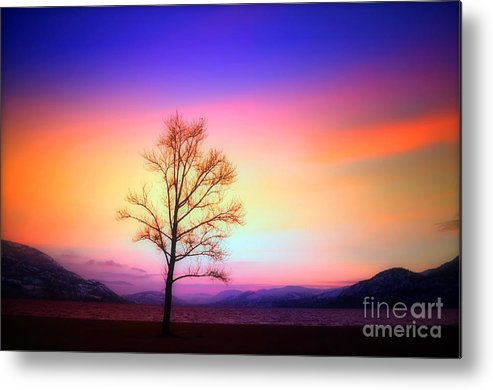 Lake Metal Print featuring the photograph Evening Sky by Tara Turner