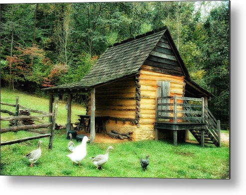 Explore Park Metal Print featuring the photograph Explore Farm by Mary Timman