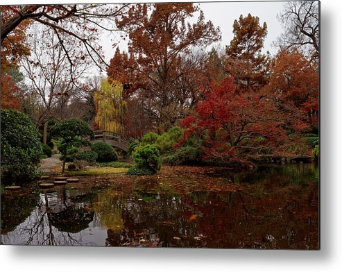 Garden Metal Print featuring the photograph Fall Colors In The Garden by Jonathan Davison