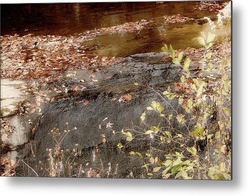Waterfall Metal Print featuring the photograph Fall Leaves by Michelle Hunter