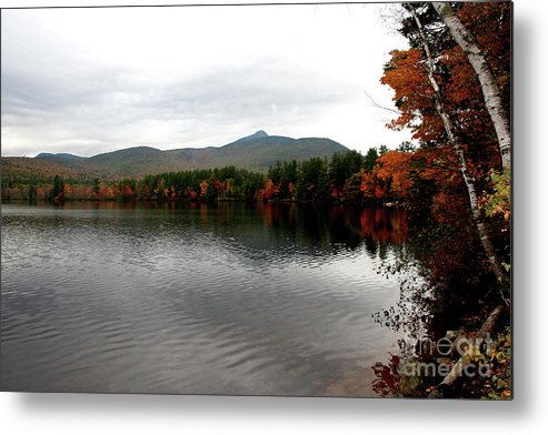 Fall Metal Print featuring the photograph Fall Reflection II by Christiane Schulze Art And Photography