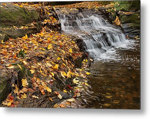 Pewitt's Nest Metal Print featuring the photograph Fallen Leaves At A Waterfall by Theo OConnor