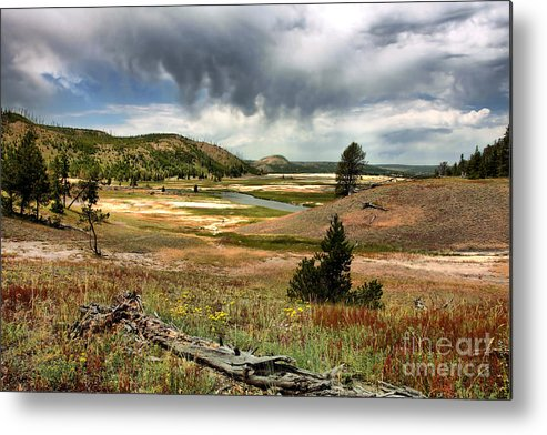 National Parks Metal Print featuring the photograph Fallen by Michele Zappa