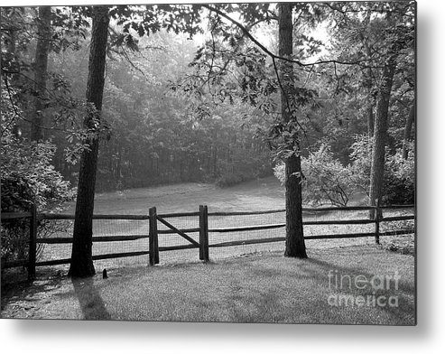 Black & White Metal Print featuring the photograph Fence by Tony Cordoza