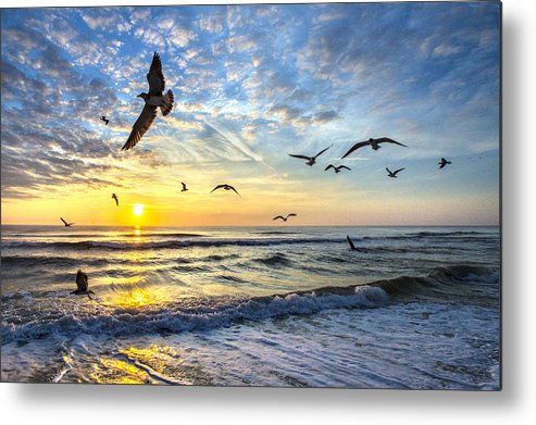Sunrise Metal Print featuring the photograph Floating On The Sun Rays by Razvan Balotescu