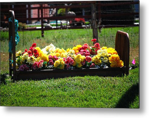 Flower Flowers Bed Iron Cast Dirt Colorful Grass Garden Fence Huntsville Utah Metal Print featuring the photograph Flower Bed by Holly Blunkall