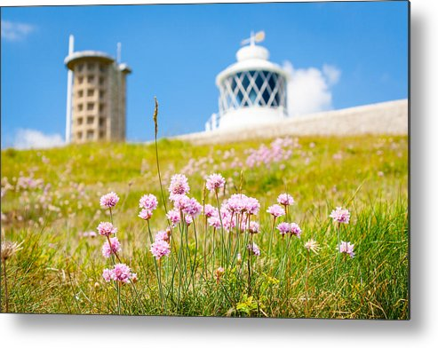 Lighthouse Metal Print featuring the photograph Flowers By Lighthouse by Gyorgy Kotorman