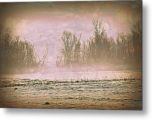 Landscape Metal Print featuring the photograph Fog Abstract 2 by Marty Koch