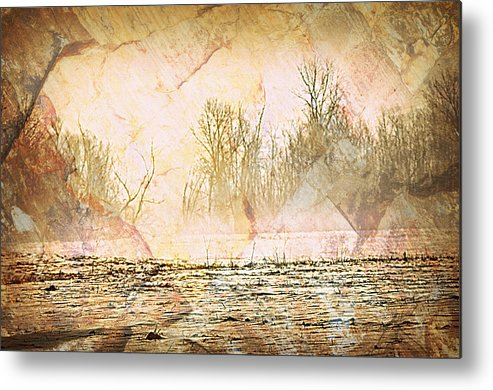 Landscape Metal Print featuring the photograph Fog Abstract 4 by Marty Koch