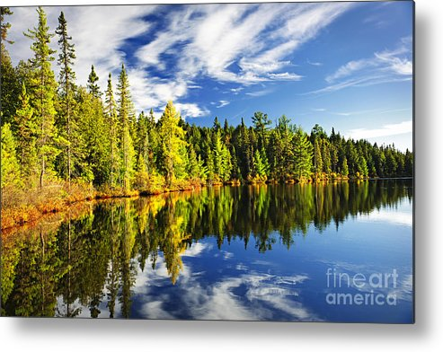 Lake Metal Print featuring the photograph Forest Reflecting In Lake by Elena Elisseeva