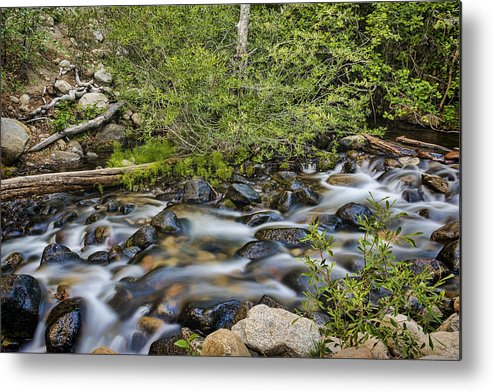 Landscape Metal Print featuring the photograph Galena Creek by Maria Coulson