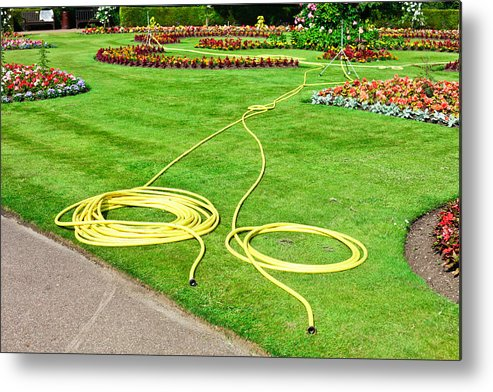 Bed Metal Print featuring the photograph Garden Hosepipes by Tom Gowanlock