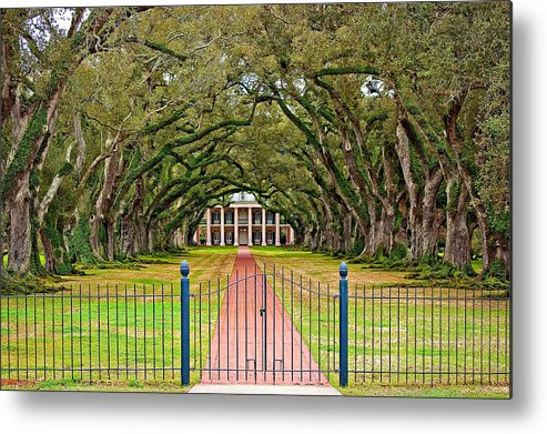 Oak Alley Plantation Metal Print featuring the photograph Gateway To The Old South by Steve Harrington