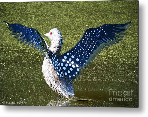 Outdoors Metal Print featuring the photograph Glass Loon by Susan Herber