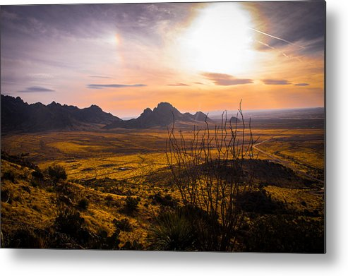 New Mexico Metal Print featuring the photograph Golden Desert by JL Griffis