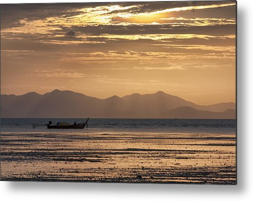 Golden Metal Print featuring the photograph Golden Morning by Kevin Hellon