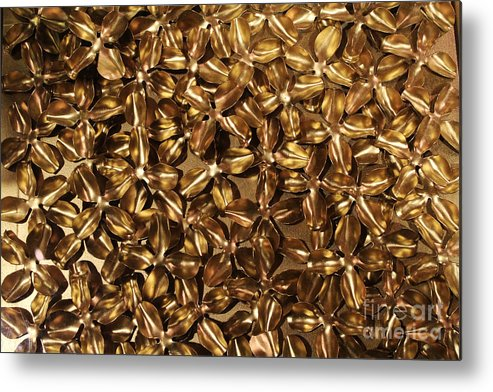 Petals Metal Print featuring the photograph Golden Petals by Steven Parker