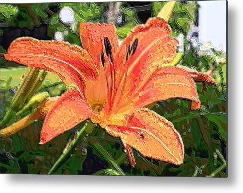 Lily Metal Print featuring the photograph Good Afternoon by Rich D'Amato