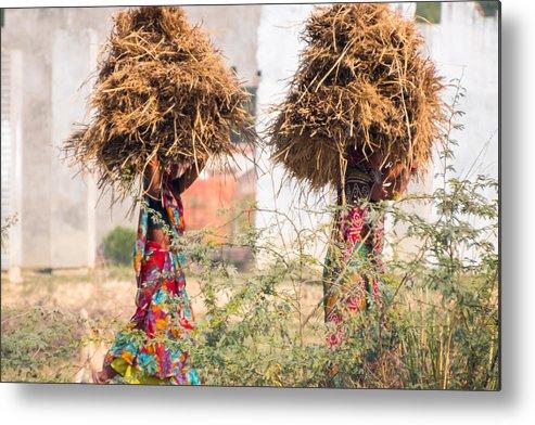 Burden Metal Print featuring the photograph Grass Cuttings by Gaurav Singh