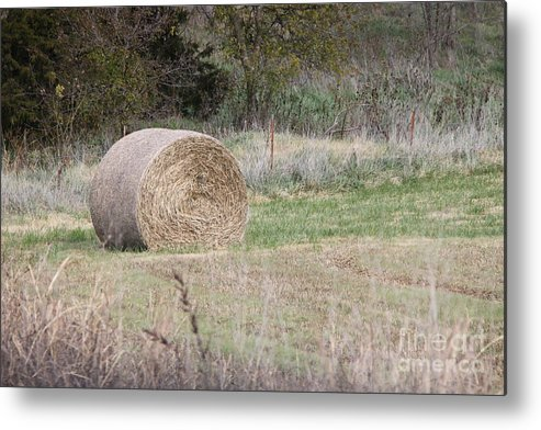 Harvest Metal Print featuring the photograph Hay Bale by Dick Willis
