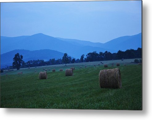 Nature Metal Print featuring the photograph Hayfield At Dusk by Sherri Quick