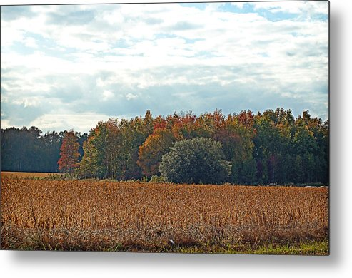 Autumn Metal Print featuring the photograph Hazy Autumn Afternoon by Linda Brown