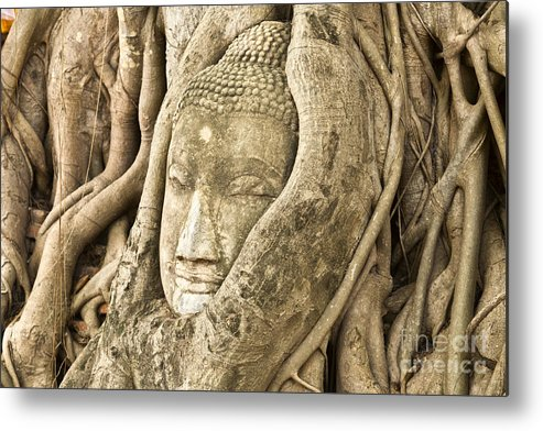 Ancient Metal Print featuring the photograph Head Of Buddha Ayutthaya Thailand by Colin and Linda McKie