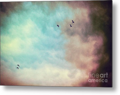 Birds Metal Print featuring the photograph High In The Sky by Silvia Ganora