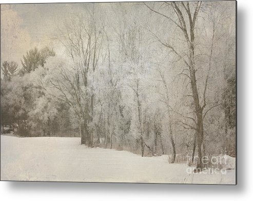 Radiation Metal Print featuring the photograph Hoar Frost On A Winters Day by Keith Bell