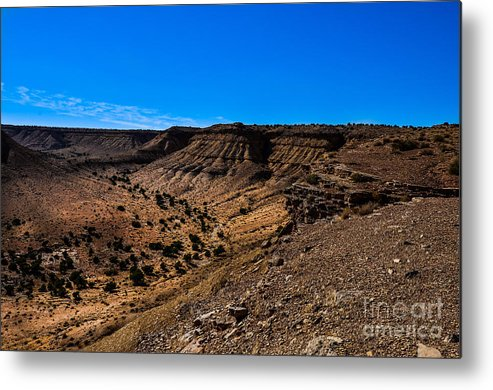 Brown Metal Print featuring the photograph How Green Is The Valley by Rich Priest