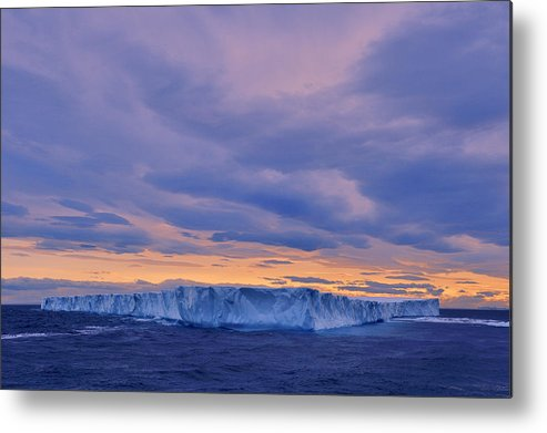 Ice Metal Print featuring the photograph Ice Island by Tony Beck