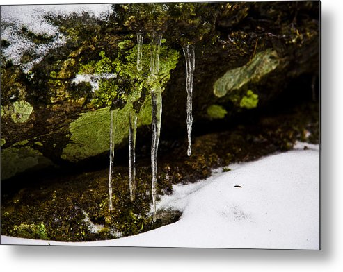 Icicles Metal Print featuring the photograph Icicles by Viola Jasko