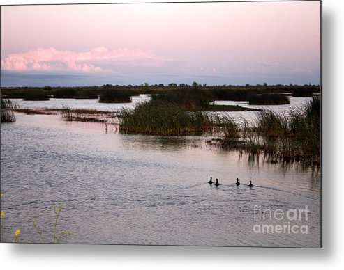 Night Metal Print featuring the photograph Into The Night by Juan Romagosa