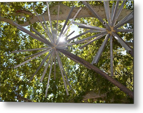 Iron Sculpture Metal Print featuring the photograph Iron Wood by Thomas Gregg Hoctor