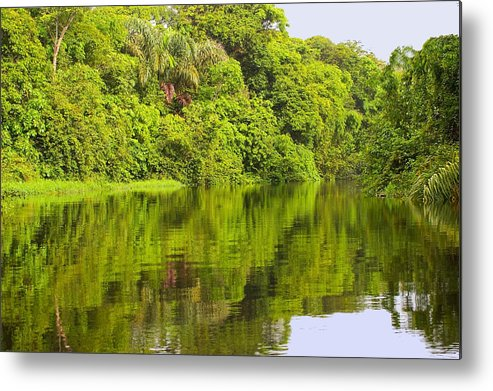 Landscape Metal Print featuring the photograph Jungle River by Judith Russell-Tooth
